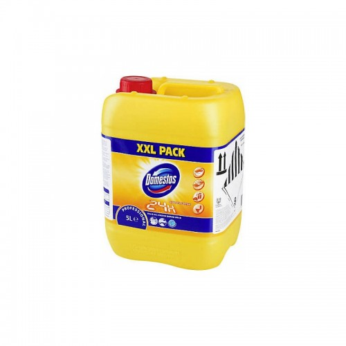 Detergent dezinfectant Domestos Professional Citrus Fresh XXL Pack 5 litri